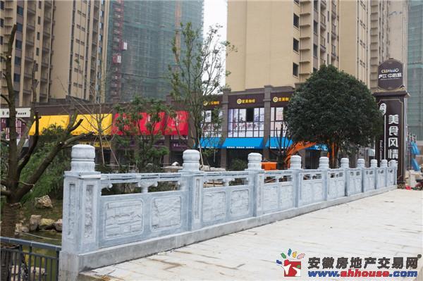 庐江中心城(商铺)其他图片