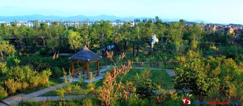 远洋桃花岛实景图