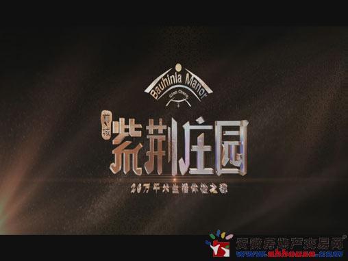 前城紫荆庄园楼盘视频