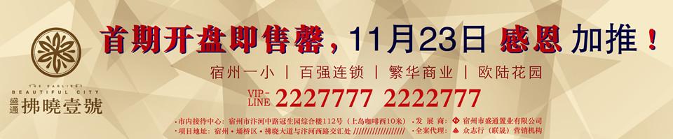 【拂晓壹號】首期开盘即售罄,11月23日感恩加推