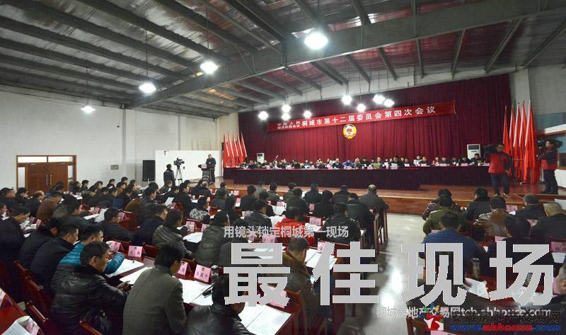 市政协十二届四次会议隆重开幕