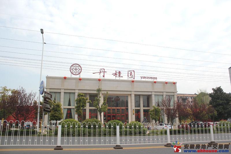乐业丹桂园实景图
