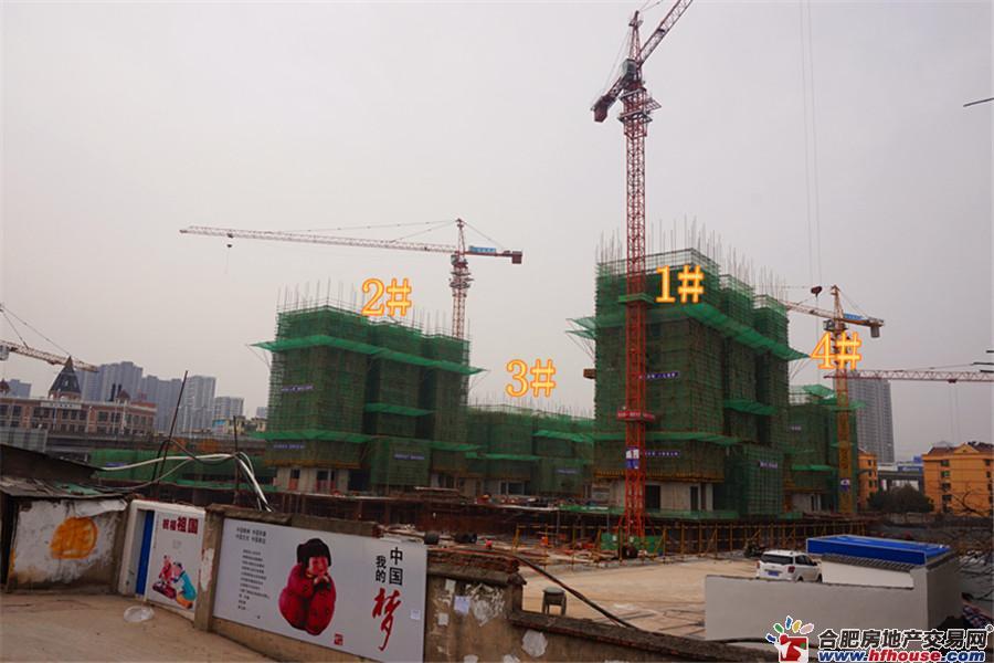 蓝光禹洲城耍街实景图