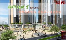 【融科梧桐里】阜阳高架首站 北城第一生态社区