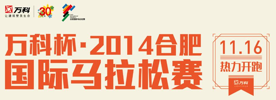 直播:万科杯 2014合肥国际马拉松赛热力开跑