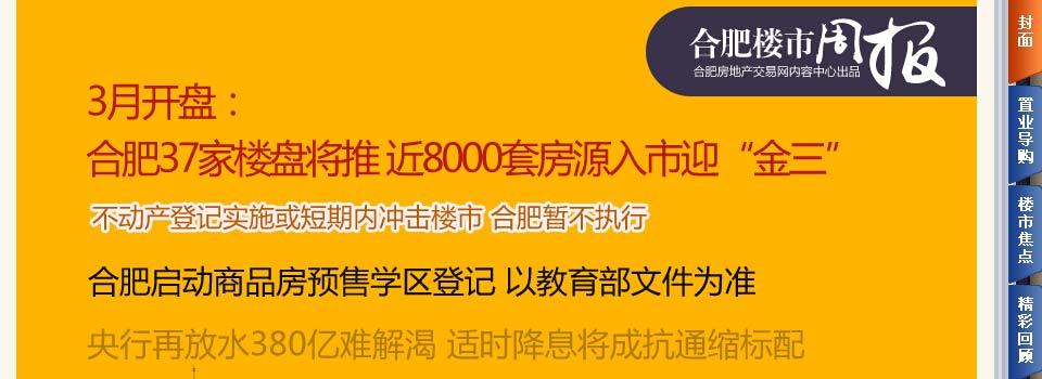 周报:3月合肥8000套房源入市