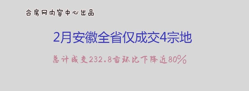2月安徽全省仅成交4宗地