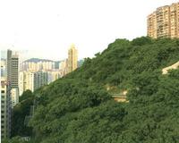 香港-晓峰