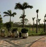 領凱_發展商為首8名3房買家提供置業大禮,總值 HKD $704,000。
