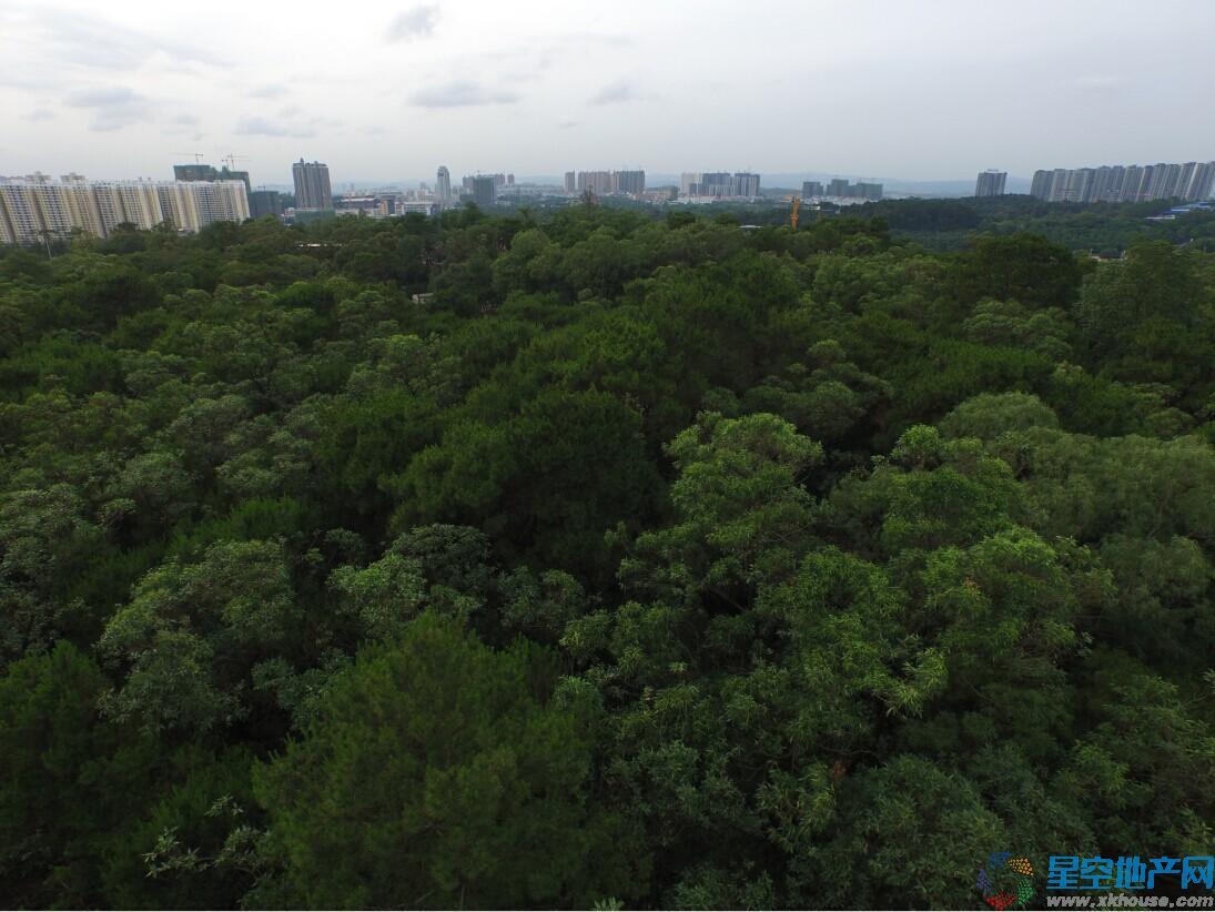 万科城周边环境图